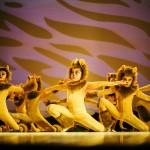 Muestras de Ballet – El Rey León 2015
