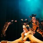El Rey León – Presentación Ballet 2015